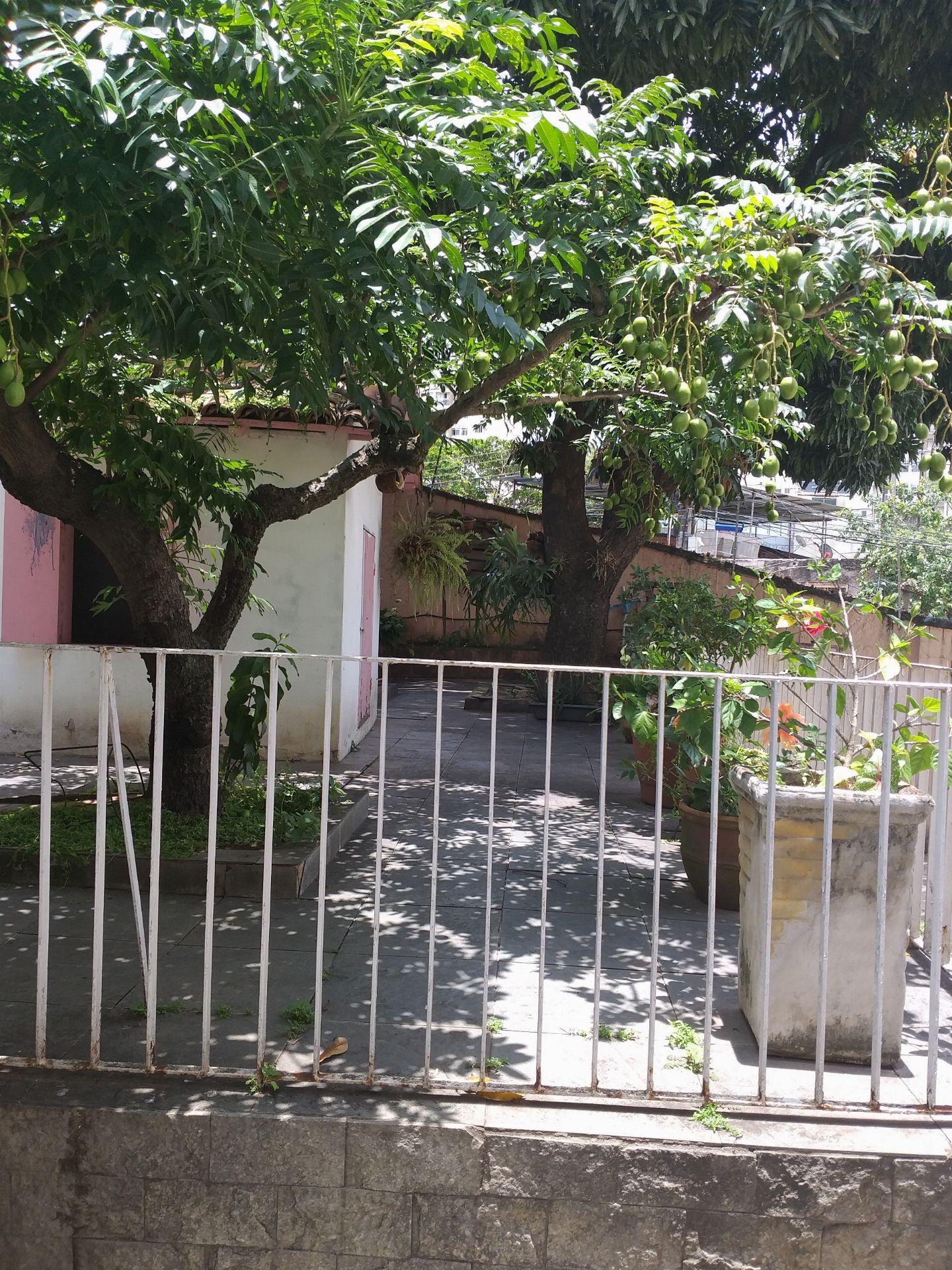 Casa À Venda - Higienópolis - Rio de Janeiro - RJ - 131 - 5